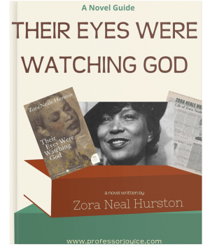 Their Eyes Were Watching God Novel Guide